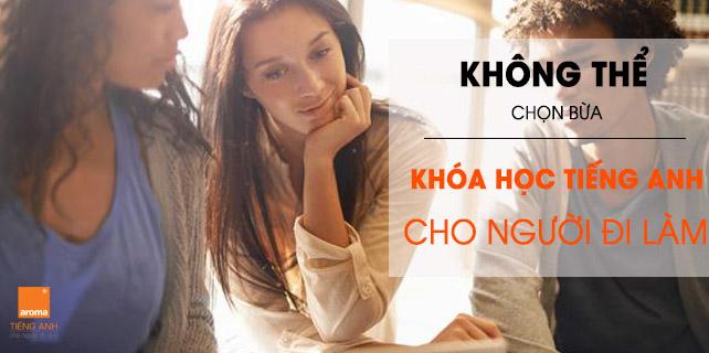 Can-khoa-hoc-tieng-anh-cho-nguoi-di-lam-nhung-khong-the-chon-bua