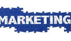 phong-van-marketing-bang-tieng-anh