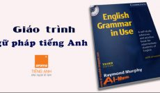 Download-giao-trinh-ngu-phap-tieng-anh-co-ban-english-grammar-in-use