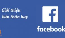Cach gioi thieu ban than hay tren facebook bang tieng anh