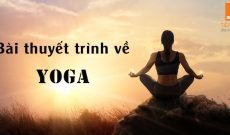 Bai-thuyet-trinh-ve-yoga-bang-tieng-anh